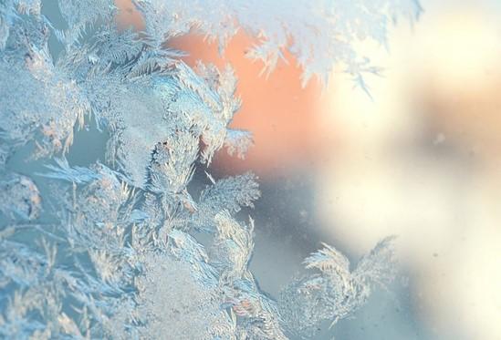 Frost - anti gel